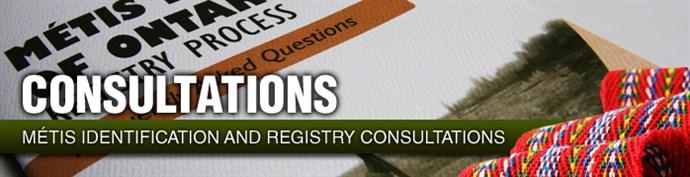 Registry Consultations header