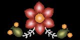 Aspire-flower-1